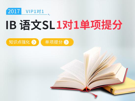 【VIP1对1】IB语文备考冲刺6+ IB语文考前冲刺课程